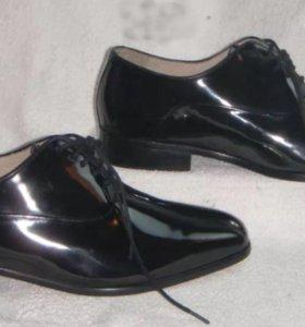 Мужские туфли Montecantini