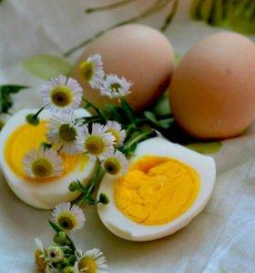 Яйцо от домашних курочек и сливочное козье молоко