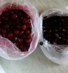 Замороженная ягода(вишня ,смородина)