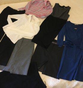 Пакет офисной одежды 42 размер