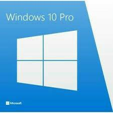 Microsoft Windows 10 Pro (OEM)