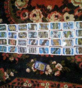 Сувенирные игральные карты в стиле приэльбрусье