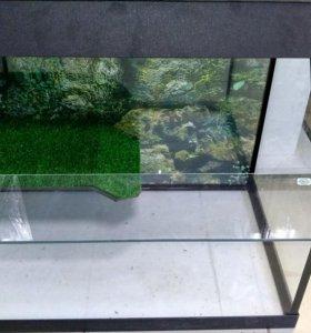Аква- террариумы для водных и сухопутных черепах