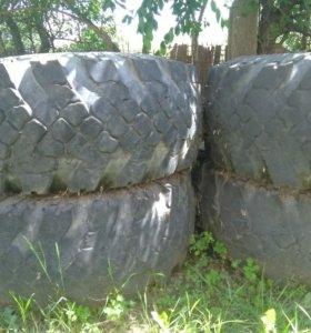 Омск шина