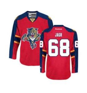 Хоккейный свитер Florida Panthers Ягр
