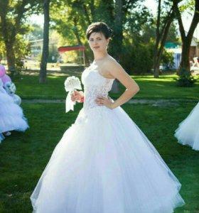 Аренда и продажа платья