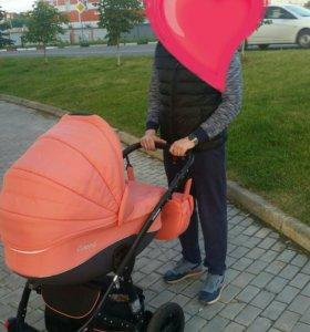Детская коляска Car-Baby Concord 2в1