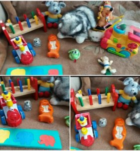 Развивающие и мягкие игрушки