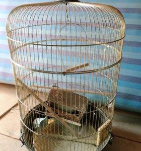 клетка для попугаев бу