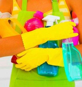 Мытьё окон,уборка квартир.