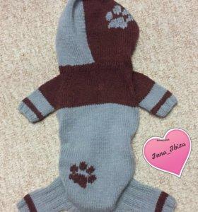 Вязаная одежда для собак мелкой породы