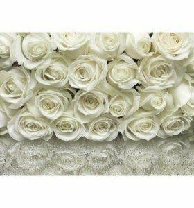 """Фотообои """"Белые розы"""""""