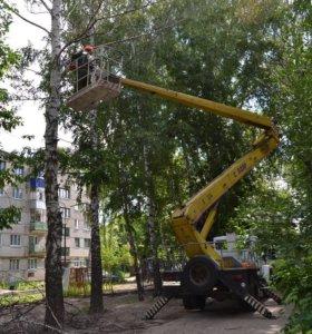 Спиливание и уборка деревьев
