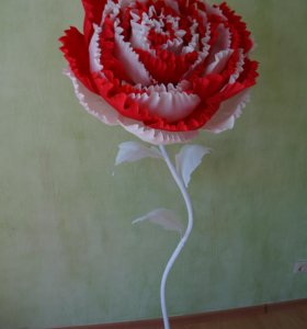 Ростовой цветок