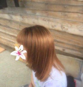 Окрашивание и стрижка волос