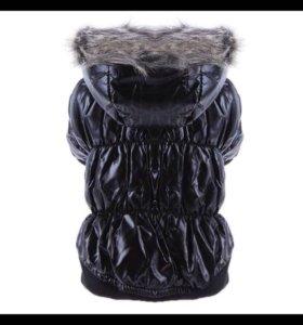 Новая Куртка на собачку мелкой породы