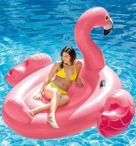 Надувные Круги и Матрасы Фламинго