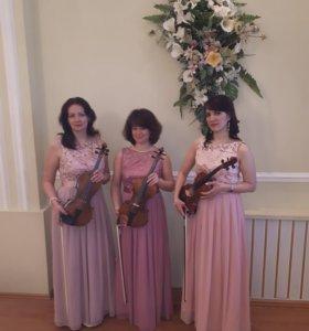 Скрипичное трио на праздник/встречу/фуршет