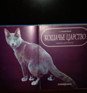 Книга про кошек.