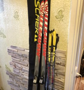 Комплект : лыжи , палки, ботинки, чехол