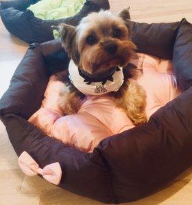 🐶 Новая лежанка для собак «Comfort» 🐕