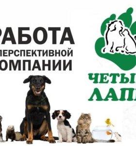 Продавец- консультант (ветеринар)