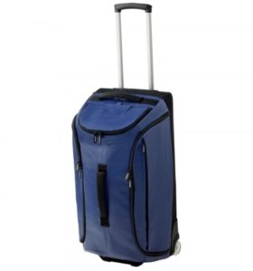 Спортивная сумка на колесиках