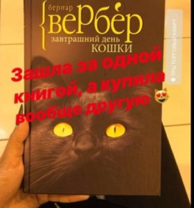 Книга «Завтрашний день кошки»