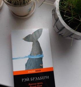 Две книги в и мягкой обложке