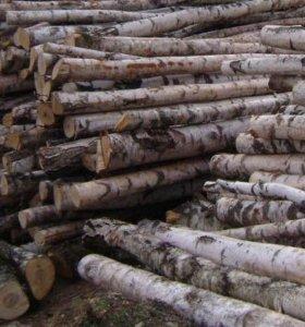 Береза дровяная 6м
