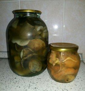 Грибы маринованные домашней консервации
