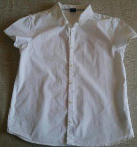 Блузки марки Gap