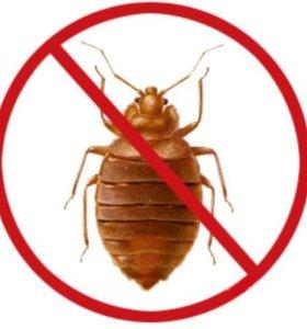Набор для обработки от насекомых клопов тараканов
