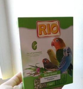 Травка для попугайчиков, корм и палочки-лакомство