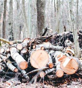 Лес кругляк на дрова. В наличии. Большие объемы