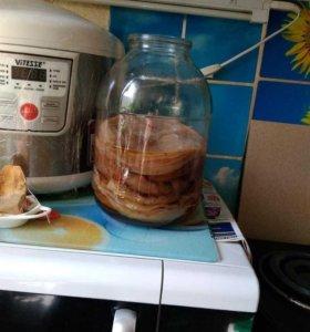 Чайный гриб(отлично поднимет иммунитет)
