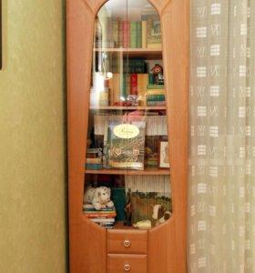 Шкаф для книг или посуды  и полка