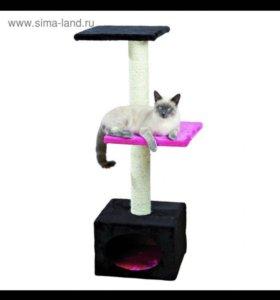 Дом для кошки ( новый)