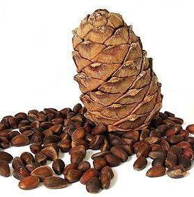 Орехи кедровые 10 вёдер по 10 л  за ведро 1000руб