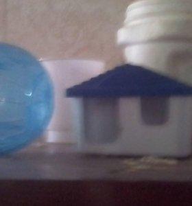 Дом и шар для джунгарика
