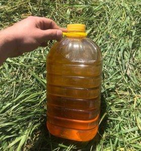 Подсолнечное масло не рафинированное (с запахом)