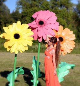 Гигантские ростовые цветы