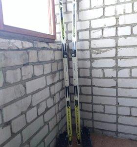 Лыжи tisa + ботинки spine