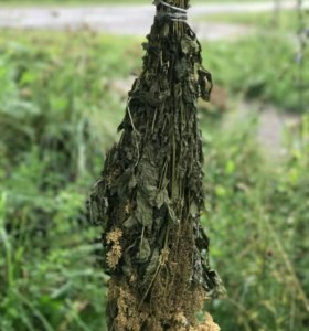 Таволга трава ароматная для бани в парилку