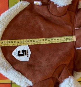 Одежда для собаки маленьких пород