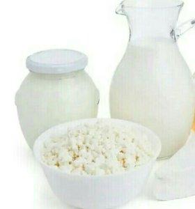 Молоко, сметана, творог.