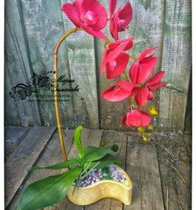Орхидея от