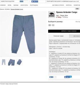 Штаны джогеры Anteater