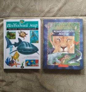 2 книги, энциклопедии