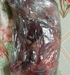 Мясо нутрий